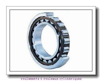 Toyana NNCL4960 V roulements à rouleaux cylindriques