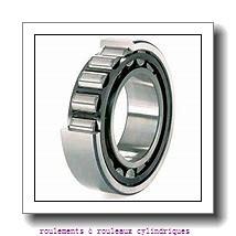Toyana NF18/500 roulements à rouleaux cylindriques