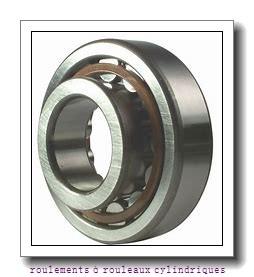 Toyana NNCF5010 V roulements à rouleaux cylindriques