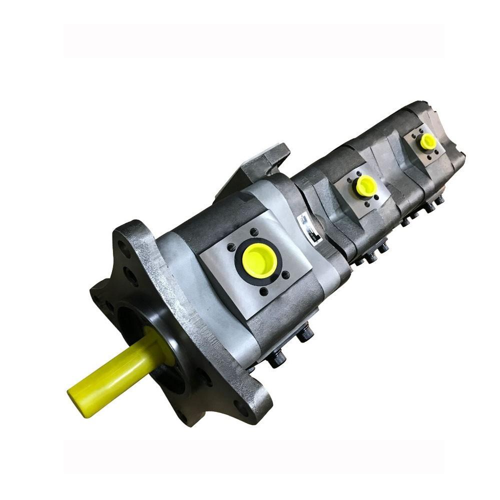 NACHI IPH-4A-25-20 IPH Pompe à engrenages