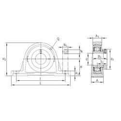 INA PASE30-N-FA125 unités de roulement