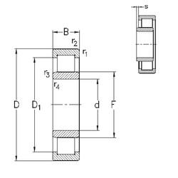 50 mm x 80 mm x 16 mm  NKE NU1010-E-MPA roulements à rouleaux cylindriques