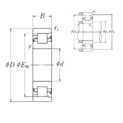 55 mm x 120 mm x 29 mm  NSK NF 311 roulements à rouleaux cylindriques