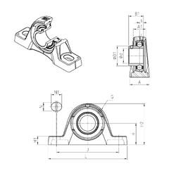 SNR USPLE205 unités de roulement