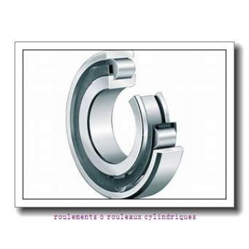 25 mm x 62 mm x 17 mm  CYSD NJ305+HJ305 roulements à rouleaux cylindriques