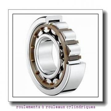 Toyana HK1510 roulements à rouleaux cylindriques