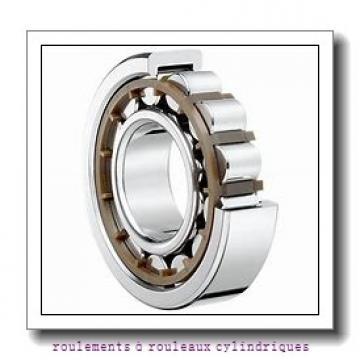 Toyana HK3014 roulements à rouleaux cylindriques