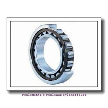 Toyana NJ19/600 roulements à rouleaux cylindriques