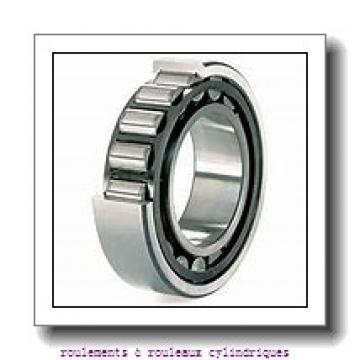 Toyana BK0908 roulements à rouleaux cylindriques