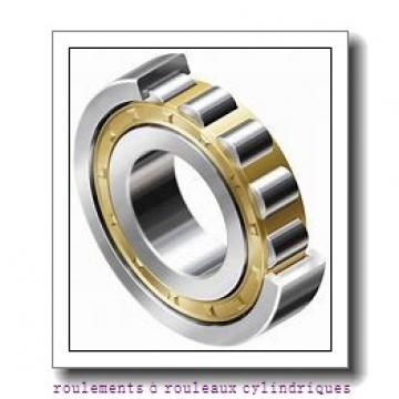 Toyana HK0608 roulements à rouleaux cylindriques