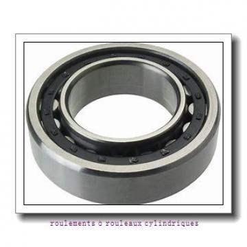 Toyana NUP3036 roulements à rouleaux cylindriques