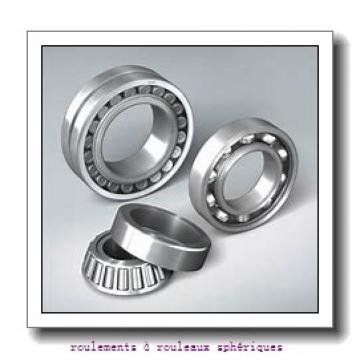 125 mm x 250 mm x 88 mm  ISB 23228 EKW33+H2328 roulements à rouleaux sphériques
