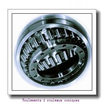 Fersa JLM813049/JLM813010 Roulements à rouleaux coniques