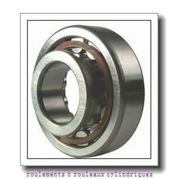 Toyana NF2244 roulements à rouleaux cylindriques