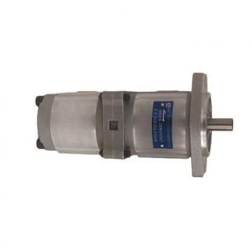 NACHI IPH-2A-8-11 IPH Pompe à engrenages