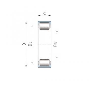 INA 710006600 roulements à rouleaux cylindriques