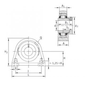 INA TSHE25-N unités de roulement