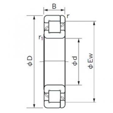 120 mm x 180 mm x 28 mm  NACHI NP 1024 roulements à rouleaux cylindriques