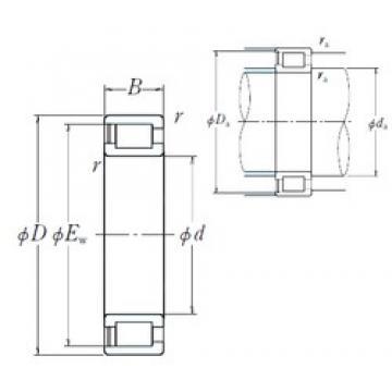 150 mm x 225 mm x 56 mm  NSK NCF3030V roulements à rouleaux cylindriques