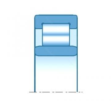55,000 mm x 106,000 mm x 92,000 mm  NTN R1167D2 roulements à rouleaux cylindriques