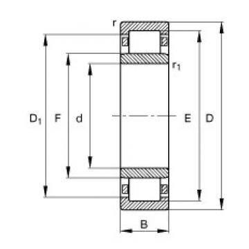 65 mm x 140 mm x 33 mm  FAG NU313-E-TVP2 roulements à rouleaux cylindriques