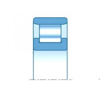 50,000 mm x 90,000 mm x 20,000 mm  SNR N210EG15 roulements à rouleaux cylindriques