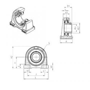 SNR USPAE202 unités de roulement